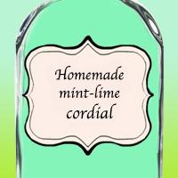 Домашний мятно-лаймовый кордиал