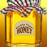 Мачилусовый мед